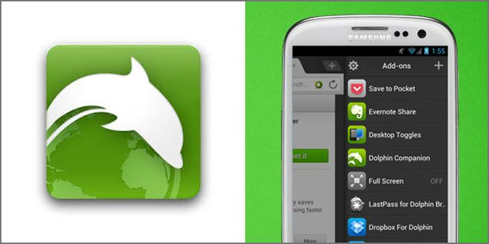 Dolphin addons